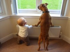 These puppy and baby pairs will melt your heart and brighten your day.