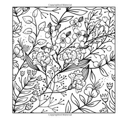 Amazon Adult Coloring Books A Book For Adults Featuring 50 Whimsical