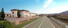 Wine Culture Centre in Verona Competition #architecture #render #competition #design #interior http://goo.gl/l0yLR0