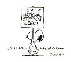 National Stupid Cat Week illustration by Charles M. Schulz :: scanned from The Snoopy Festival :: Holt, Rinehart and Winston :: 1974