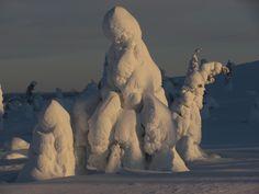 jégvilág