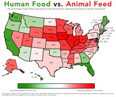 2 Simple Maps That Reveal How American Agriculture Actually Works - The Most Lucrative Food Crop In Each State #infographic