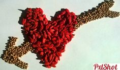 Semintele iubirii | Natura Statica - Seminte - PxlShot.ro