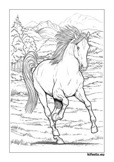 Horse Pictures To Color For Adults Horse Horses Adult Coloring Pages Horse Coloring Page For Adults Horse Adult Coloring Page Printable Coloring Page Horse Lover Coloring Page Gift Animal Horse Coloring Pages, Coloring Pages For Girls, Printable Coloring Pages, Coloring For Kids, Coloring Books, Free Coloring, Coloring Sheets, Colorful Drawings, Colorful Pictures