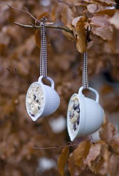 Reuse Tea Cups for suet bird feeders. These would look good hanging from the porch front rafter.