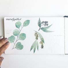 """Rest and be thankful"" -- William Wordsworth . Today, I'm doing just that. After weeks of traveling and two huge wedding projects, I'm taking a much needed rest day. So far, I've slept in and now, I'm working on some plant studies, just for kicks and giggles  . #ytcwatercolors #ytcjournals"