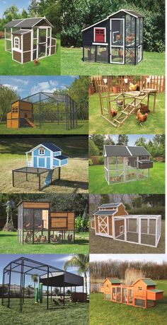 So many best - selling coops for your flocks + $49 flat rate shipping!