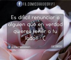 #corridos_vip
