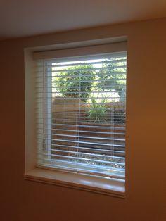 Basement Window Planter