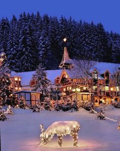 Beautiful Winter Wonderland Lighting Ideas For Outdoor And Indoor Decor 20 Winter Wonderland Christmas, Cozy Christmas, Beautiful Christmas, Christmas Stuff, White Christmas, Christmas Crafts, Carpe Diem, Nos4a2, Winter Outfits