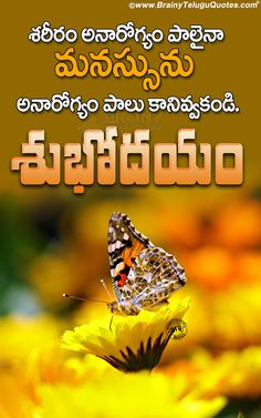 Good Morning Motivational Words in Telugu-best Life Changing Quotes in Telugu Morning Quotes Images, Good Morning Quotes For Him, Morning Greetings Quotes, Good Morning Messages, Telugu Inspirational Quotes, Good Morning Inspirational Quotes, Inspiring Quotes About Life, Good Morning Quotes Friendship, Gud Morning Wishes