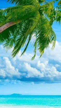 Exotic, Summer, Beach Scenery,