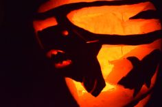 Sharknado Detail Pumpkin