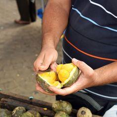 O Pequi é o maior símbolo da gastronomia de Goiânia e pode ser encontrado facilmente à venda pelas ruas.Goiânia - Goiás - Brasil  City Tour com @araraunaturismoreceptivo - #pequi - ---- - ---- - #goiania #goiânia #goianiawalk #goianiacity #AraraunaReceptivo #ReceptivoEmGoiás #Travel #BoraViajar #Fun #FicaDica #citytourgoiania #conhecagoiania #blogueirorbbv #azulmagazine #MTur #ViajePeloBrasil #DicasdeDestino #PartiuBrasil #decolar #VoeGOL #travel #LoveTravel #TravelLove #viagem…