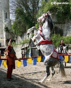 equestrio.fr - La Légende des Chevaliers / PROVINS - France