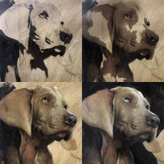 """Jennifer Gennari on Instagram: """"As promised, process shots of the Weimaraner pup from yesterday. More to come:) #weimaraner #weimaranersofinstagram #weimaranerpuppy…"""""""