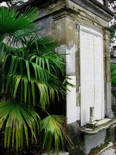 New Orleans cemetery New Orleans Voodoo, New Orleans City, New Orleans Homes, New Orleans Louisiana, Oh The Places You'll Go, Places To Visit, New Orleans Cemeteries, Crawfish Etouffee, Southern Gothic