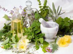 Как очистить организм от шлаков с помощью трав и продуктов питания