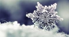 kar ile ilgili görsel sonucu