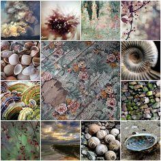 Pastel , the art from my Flickr friends | Flickr: Intercambio de fotos