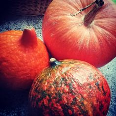 I co by tu z tych dyniek zrobić? Chociaż są takie ładne, że aż żal pokroić :) Pumpkin, Vegetables, Instagram, Food, Pumpkins, Vegetable Recipes, Eten, Veggie Food, Squash