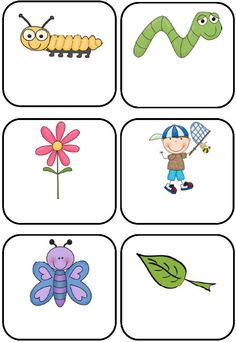 Bees, Bugs and Mini Beasts Themed Blank Classroom Labels   48 pages, plus a 15 page how to use guide.    These basic, blank mini-beasts templates can be used as labels to add to your classroom theme.    There are 7 different designs of the same 12 images i.e. 6 to a page, 4 to a page, 2 to a page, with the images in different positions and 2 sets with the images on a full-page. Includes cover page. $