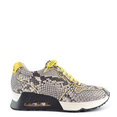 Ash Love Sneaker, Donna 36 EU Python/Arancione