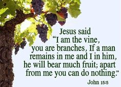 Remain in God and you will bear fruit. Gospel Quotes, Jesus Quotes, Bible Quotes, Bible Verses, Scriptures, Uplifting Quotes, Inspirational Quotes, Little Prayer, Jesus Saves