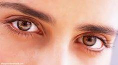 Obat Tradisional Penyakit Glaukoma Mata yang mampu memberikan kesembuhan secara tuntas, mungkin itu adalah sebaris kalimat yang menjadi pertanyaan dalam benak anda. Berikut ini kami menyajikan informasi yang menjawab semua pertanyaan dengan fakta ilmiah dan pengujian secara klinis. Jelly Gamat Gold-g adalah obat penyakit glaukoma mata terbaik saat ini.