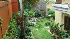 Small tropical backyard designs | http://backyard-designs-ideas.blogspot.com/2014/03/beautiful-small-backyard-design-ideas.html