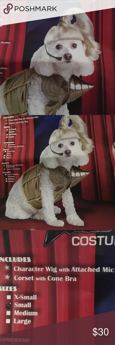 Madonna dog costume & More pics of Madonna dog costume | Costumes Dog and Customer support