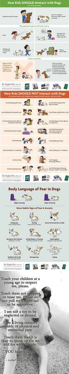 So important, even if you don't have a dog of your own. Teach your children to interact with animals