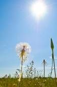 Symptom Sound-Off: Fibromyalgia, Chronic Fatigue Syndrome & Summer Heat