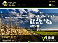 NCGA Launches Fields-of-Corn Photo Contest