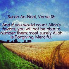 Quran surah Nahl