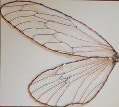 For bug theme bathroom-Fairy insect cicada wings LARGE decor
