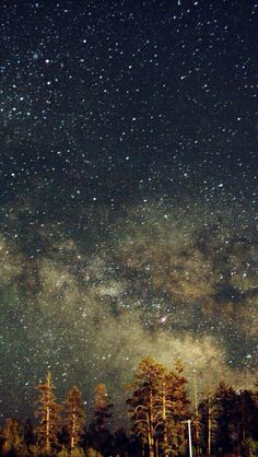 //pinterest: selinakumar// twinkle in the sky ///////////////////////////////////////////////////////////////