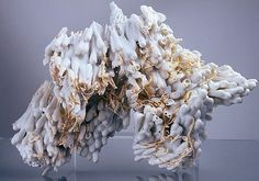 Jessica Drenk's Unnatural Sculptures of Organic Forms - Q-tips dipped in porcelain slip and fired