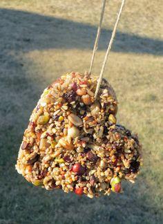 Cookie Cutter Bird Feeders