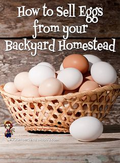 Selling Eggs from your backyard homestead - how to start a small egg business. One of the ways homesteading can make you money. Keeping Chickens, Raising Chickens, Backyard Farming, Chickens Backyard, Backyard Patio, Selling Eggs, Hobby Farms, Chicken Eggs, Small Farm