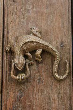 AMAZING lizard door handle. | Doors, Knobs & Hardware | Pinterest