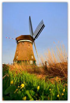 windmill @ Uitgeest