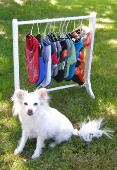 DIY Clothes Rack for pets!  Probably can just make bigger for people clothes!  LOL