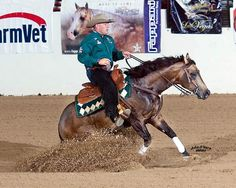 Whizkey N Diamonds ridden by Shawn Flarida. Awesome name and amazing dark buckskin stud. Almost bred our mare to him.