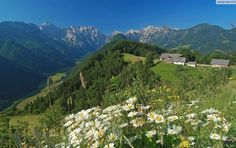 savinjska dolina slovenija