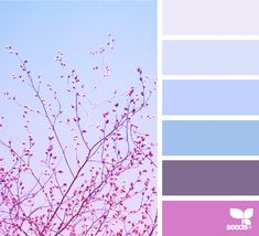 Color View | Design Seeds