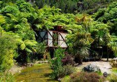 Finding Wonderland: Te Puna Quarry Park- Tauranga