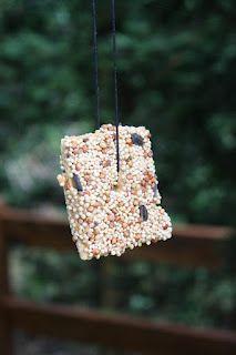 easy bird feeder project!
