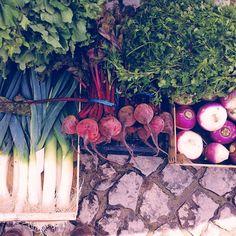 Farmers Market in Malveira