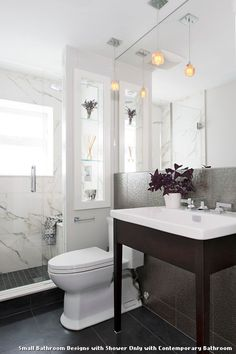 Small Bathroom Designs with Shower Only with Contemporary Bathroom With